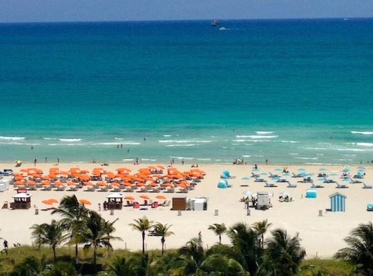 5 cose da provare a Miami