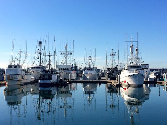 USA 2016 parte 2 San Diego