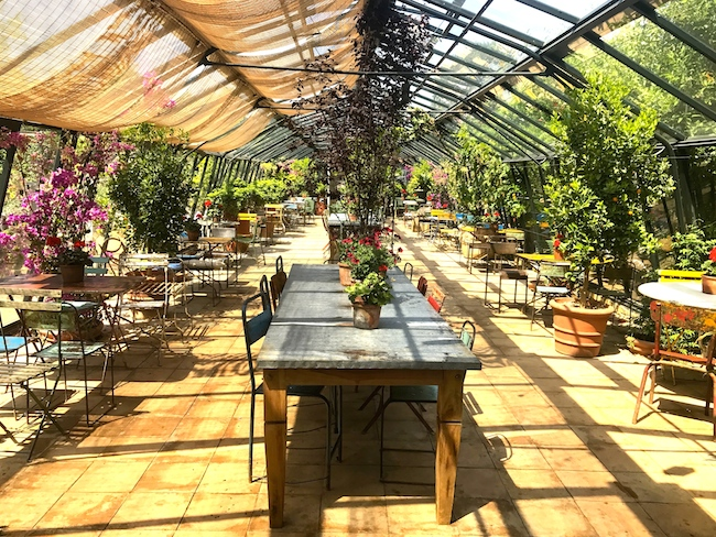 Mangiare a Londra dentro a una serra: Petersham Nurseries