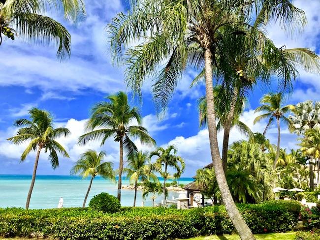 Antigua Mar dei Caraibi l'isola delle 365 spiagge